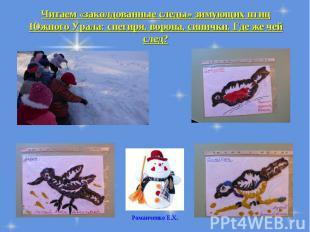 Читаем «заколдованные следы» зимующих птиц Южного Урала: снегиря, ворона, синичк