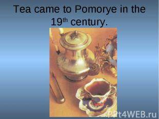 Tea came to Pomorye in the 19th century.