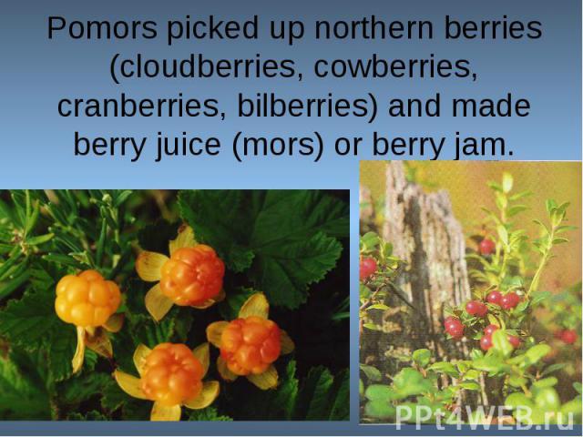 Pomors picked up northern berries (cloudberries, cowberries, cranberries, bilberries) and made berry juice (mors) or berry jam.