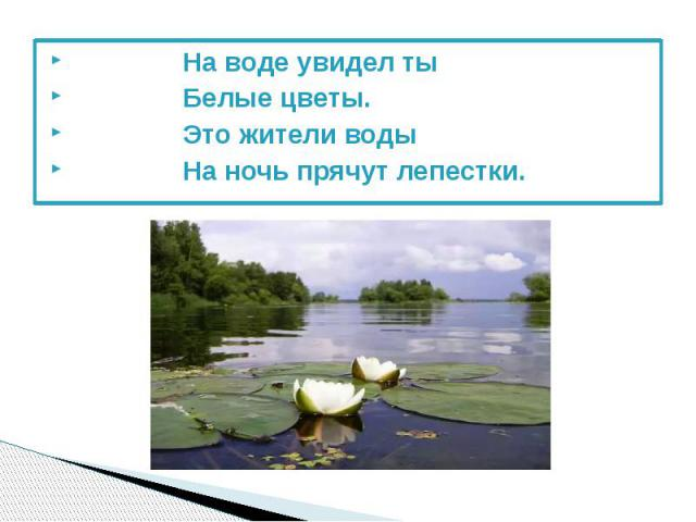 На воде увидел ты На воде увидел ты Белые цветы. Это жители воды На ночь прячут лепестки.