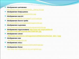 Изображение шиповника: http://photos.zamri.ru/omnifer/20429__89e3a_512.jpgИзобра