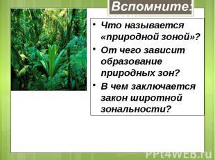 Что называется «природной зоной»?От чего зависит образование природных зон?В чем