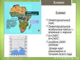 КлиматЭкваториальный поясЭкваториальные воздушные массы – влажные и жаркиеtи+240