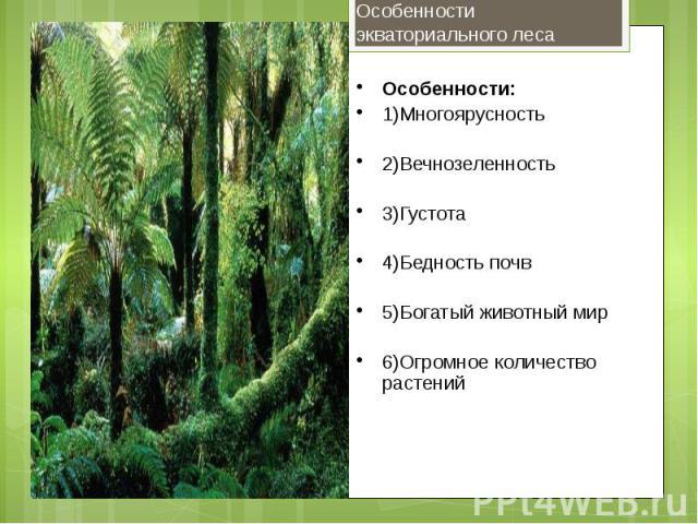Особенности:1)Многоярусность2)Вечнозеленность3)Густота4)Бедность почв5)Богатый животный мир6)Огромное количество растений