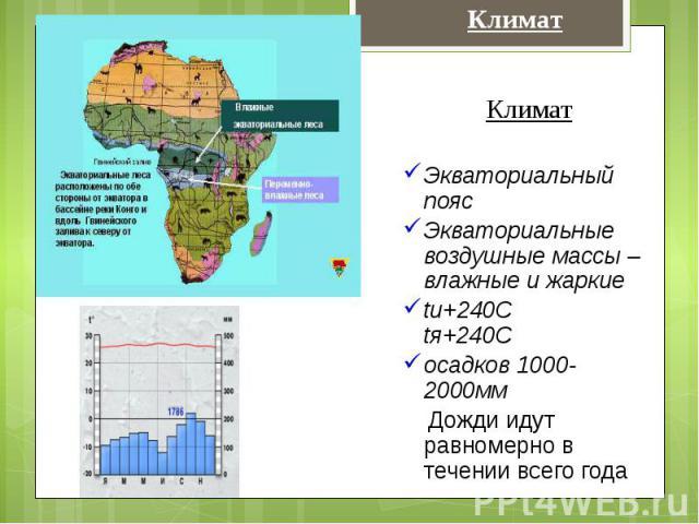 КлиматЭкваториальный поясЭкваториальные воздушные массы – влажные и жаркиеtи+240С tя+240Сосадков 1000-2000мм Дожди идут равномерно в течении всего года