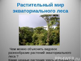 Растительный мир экваториального леса Чем можно объяснить видовое разнообразие р