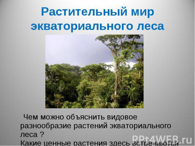 Растительный мир экваториального леса Чем можно объяснить видовое разнообразие растений экваториального леса ? Какие ценные растения здесь встречаются ?