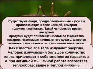 Существуют люди, предрасположенные к укусампривлекающие к себе клещей, комарови