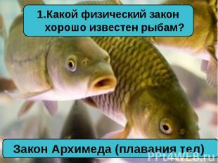Какой физический закон хорошо известен рыбам?Закон Архимеда (плавания тел)