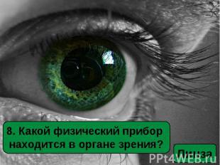 8. Какой физический прибор находится в органе зрения?