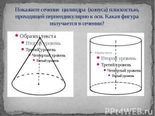 Покажите сечение цилиндра (конуса) плоскостью, проходящей перпендикулярно к оси.