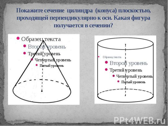 Покажите сечение цилиндра (конуса) плоскостью, проходящей перпендикулярно к оси. Какая фигура получается в сечении?