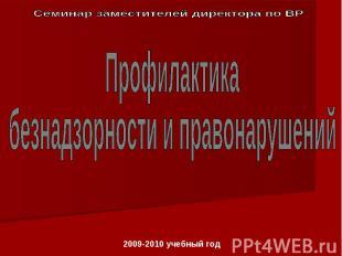 Семинар заместителей директора по ВРПрофилактика безнадзорности и правонарушений