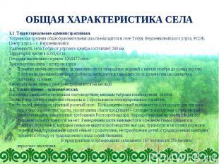 ОБЩАЯ ХАРАКТЕРИСТИКА СЕЛА 1.1 Территориальная-административная. Тобуинская средн