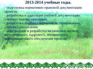 - подготовка нормативно-правовой документации проекта; - разработка и адаптация