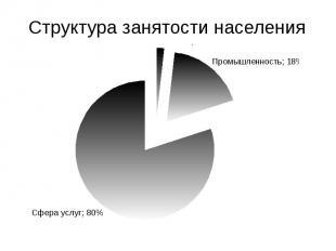 Структура занятости населения