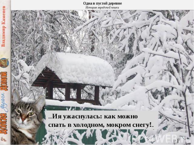 …Ия ужаснулась: как можно спать в холодном, мокром снегу!..