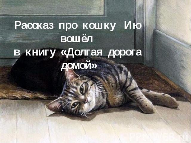 Рассказ про кошку Ию вошёл в книгу «Долгая дорога домой»