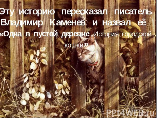 Эту историю пересказал писатель Владимир Каменев и назвал её «Одна в пустой деревне .История городской кошки»