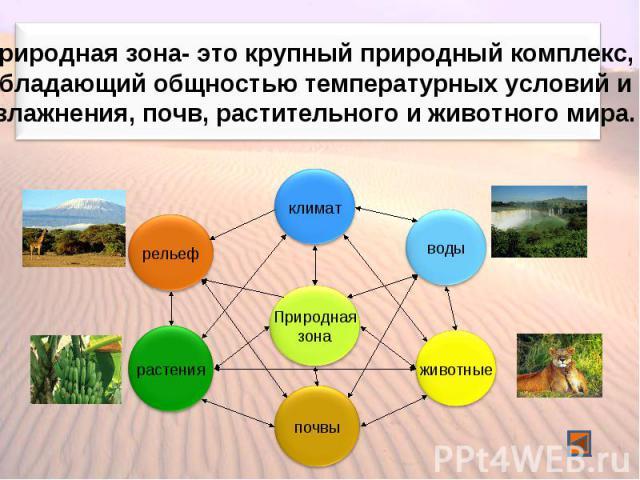 Природная зона- это крупный природный комплекс, обладающий общностью температурных условий и увлажнения, почв, растительного и животного мира.