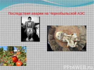 Последствия аварии на Чернобыльской АЭС