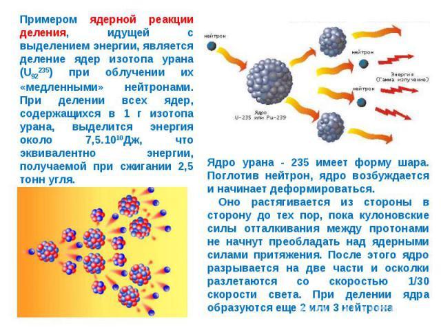 Примером ядерной реакции деления, идущей с выделением энергии, является деление ядер изотопа урана (U92235) при облучении их «медленными» нейтронами. При делении всех ядер, содержащихся в 1 г изотопа урана, выделится энергия около 7,5.1010Дж, что эк…