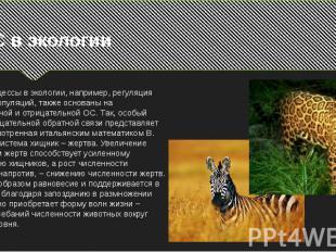 ОС в экологииМногие процессы в экологии, например, регуляция динамики популяций,