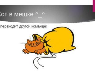 Кот в мешке ^_^ Ход переходит другой команде!