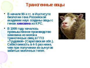 В начале 90-х гг. в Институте биологии гена Российской академии наук созданы овц