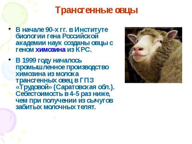 В начале 90-х гг. в Институте биологии гена Российской академии наук созданы овцы с геном химозина из КРС. В начале 90-х гг. в Институте биологии гена Российской академии наук созданы овцы с геном химозина из КРС. В 1999 году началось промышленное п…