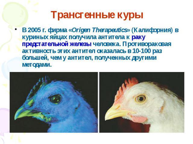 В 2005 г. фирма «Origen Therapeutics» (Калифорния) в куриных яйцах получила антитела к раку предстательной железы человека. Противораковая активность этих антител оказалась в 10-100 раз большей, чем у антител, полученных другими методами. В 2005 г. …