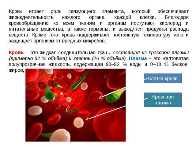 Кровь играет роль связующего элемента, который обеспечивает жизнедеятельность каждого органа, каждой клетки. Благодаря кровообращению ко всем тканям и органам поступают кислород и питательные вещества, а также гормоны, и выводятся продукты распада в…