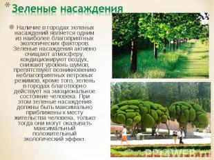 Зеленые насаждения Наличие в городах зеленых насаждений является одним из наибол