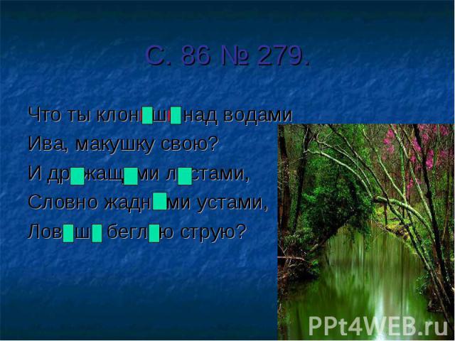 С. 86 № 279. Что ты клонишь над водами Ива, макушку свою?И дрожащими листами, Словно жадными устами,Ловишь беглую струю?