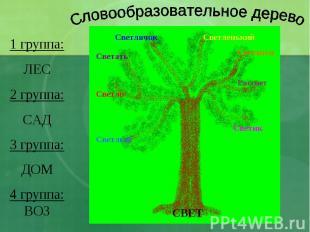 Словообразовательное дерево 1 группа:ЛЕС2 группа:САД3 группа:ДОМ4 группа:ВОЗ