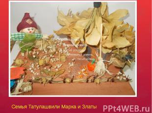 Семья Татулашвили Марка и Златы