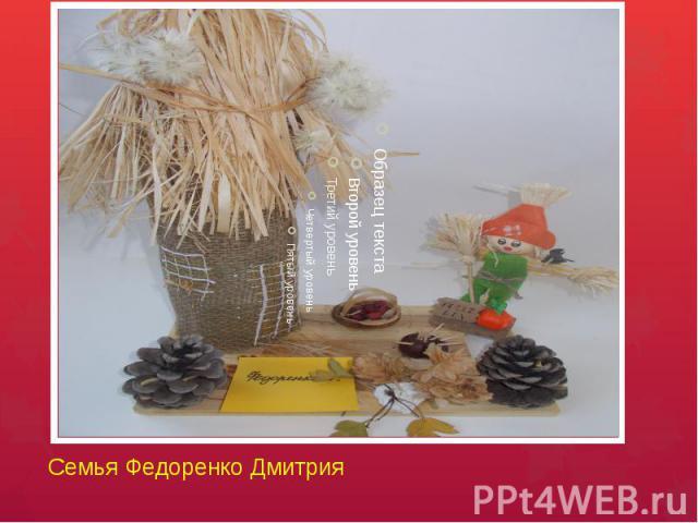 Семья Федоренко Дмитрия