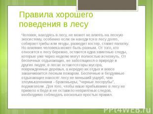 Человек, находясь в лесу, не может не влиять на лесную экосистему, особенно если