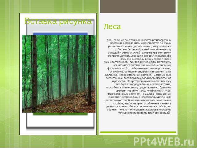 Лес - сложное сочетание множества разнообразных растений, которые сильно различаются по своим размерам строению, размножению, типу питания и т.д. Это как бы своеобразный живой механизм, большой и очень сложный, а отдельные растения - его части, дета…