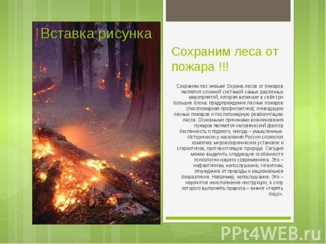 Сохраним лес живым! Охрана лесов от пожаров является сложной системой самых различных мероприятий, которая включает в себя три больших блока: предупреждение лесных пожаров (лесопожарная профилактика); ликвидацию лесных пожаров и послепожарную реабил…
