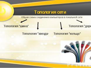 Топология сети