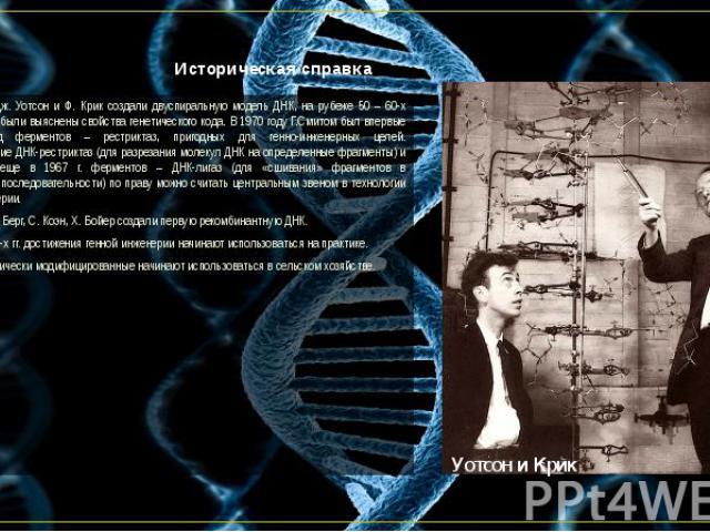 Историческая справка В 1953 году Дж. Уотсон и Ф. Крик создали двуспиральную модель ДНК, на рубеже 50 – 60-х годов 20 века были выяснены свойства генетического кода. В 1970 году Г.Смитом был впервые выделен ряд ферментов – рестриктаз, пригодных для г…