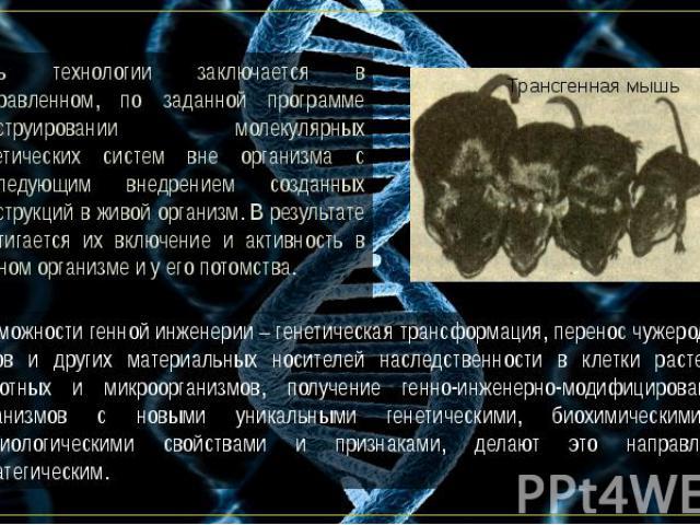 Суть технологии заключается в направленном, по заданной программе конструировании молекулярных генетических систем вне организма с последующим внедрением созданных конструкций в живой организм. В результате достигается их включение и активность в да…