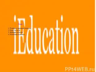 План: 1. Понятие и признаки налогов 2. Виды налогов 3. Функции налогов 4. Налого