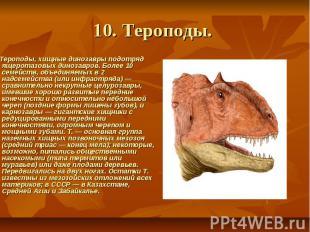 10. Тероподы. Тероподы, хищные динозавры подотряд ящеротазовых динозавров.