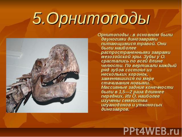 5.Орнитоподы Орнитоподы - в основном были двуногими динозаврами питающимися травой. Они были наиболее распространенными заврами мезозойской эры. Зубы у О. срастались по всей длине челюсти. По вертикали каждый ряд зубов состоял из нескольких кор…