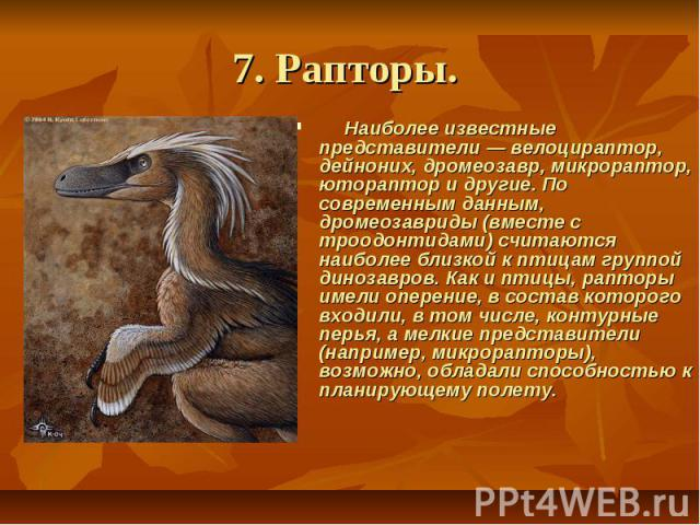 7. Рапторы. Наиболее известные представители — велоцираптор, дейноних, дромеозавр, микрораптор, ютораптор и другие. По современным данным, дромеозавриды (вместе с троодонтидами) считаются наиболее близкой к птицам группой динозавров. Как и птиц…
