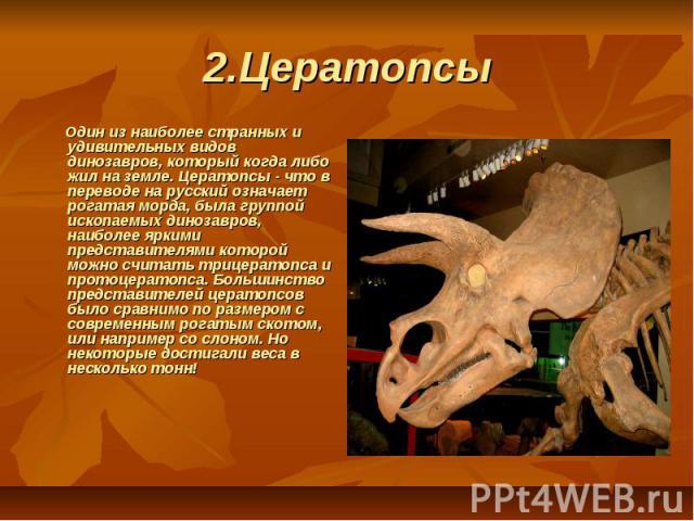 2.Цератопсы  Один из наиболее странных и удивительных видов динозавров, который когда либо жил на земле. Цератопсы - что в переводе на русский означает рогатая морда, была группой ископаемых динозавров, наиболее яркими представителями которой мо…
