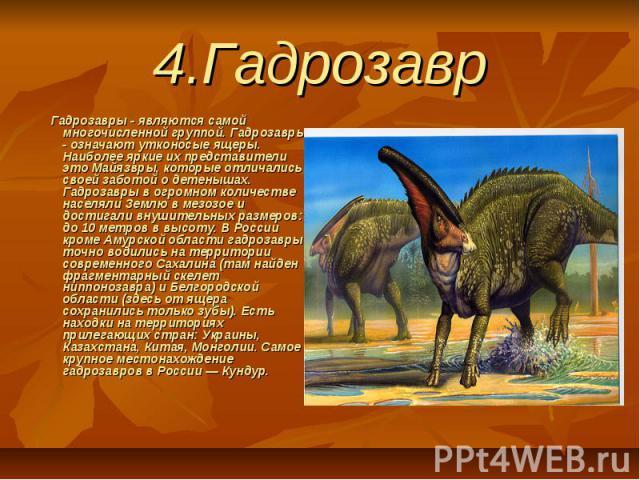 4.Гадрозавр Гадрозавры - являются самой многочисленной группой. Гадрозавры - означают утконосые ящеры. Наиболее яркие их представители это Майязвры, которые отличались своей заботой о детенышах. Гадрозавры в огромном количестве населяли Землю в…