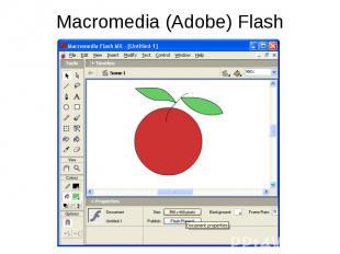 Macromedia (Adobe) Flash
